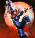 bv 1994 blackcat