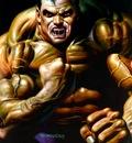 bv 1995 hulk