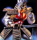 BV 1996 silver samurai