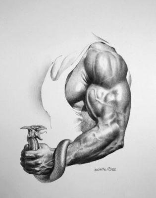BV sketch 1982 arm