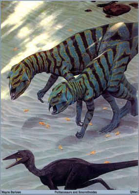 QMan WB TALOWB 1331 Psittacosaurs and Sinornithoides
