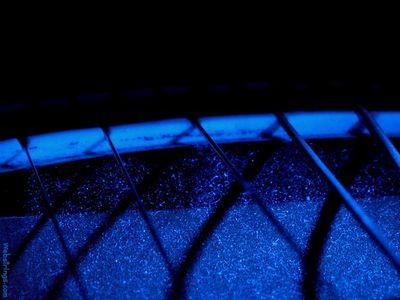webstrings blue nut