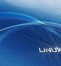 linux dantis