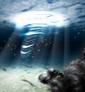 sea the light