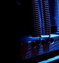 webstrings blue springs
