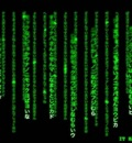 the matrix has you1