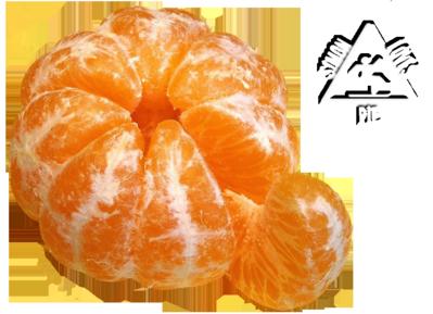 mandarinefinal8hi
