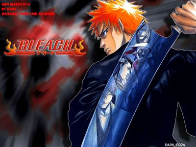 Copie de Minitokyo Anime Wallpapers Bleach[39118]