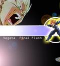 vegetafinalflash