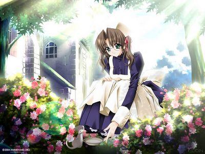 Anime Girls 766452514  164697738  1024x768