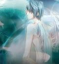 angel83if