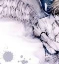 angelsanctuary185sy