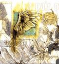 angels 13