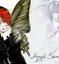 angels 6