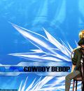 cowboy 59