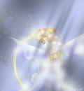 Sailormoon Dream