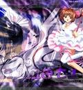 Feel the love for sakura