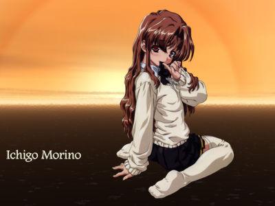Ichigo Morino