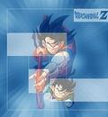 dragonball11