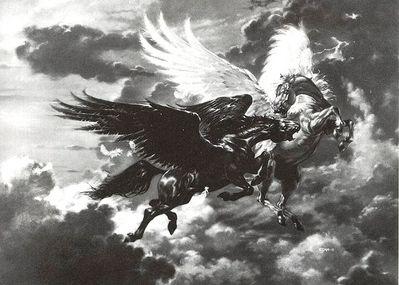 Pegasusfight