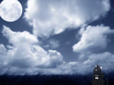 Wallpaper   Cat looking at Moon