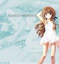 Minitokyo Anime Wallpapers Onegai Teacher [2129]