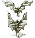 dracula big wingsvh