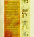 insignium1