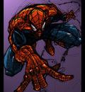 spidermancolr2