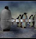 linux NeverBeAlone 1280x1024