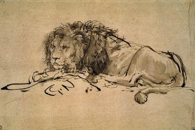 Lion, Rembrandt