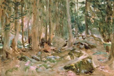 Pine Forest, Sargent