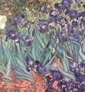 irises, van gogh,