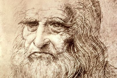 self portrait in old age, leonardo da vinci,