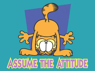 Assume the Attitude