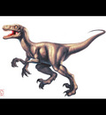 gd beckermayer velociraptor