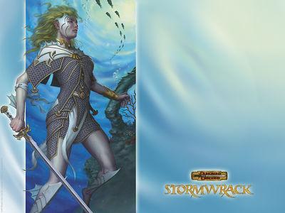 stormwall2