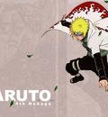 Naruto172