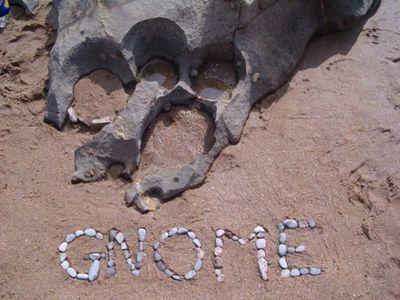 GNOME gnomebeach