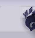 GNOME Beast blueII 1600x1200