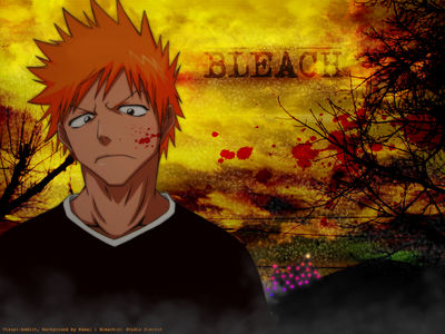 Minitokyo Anime Wallpapers Bleach[69425]