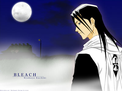 Minitokyo Anime Wallpapers Bleach[97742]