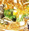 Minitokyo Anime Wallpapers Chobits[41633]