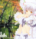 Minitokyo Anime Wallpapers Chobits[68118]