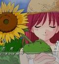 Minitokyo Anime Wallpapers Shingetsutan Tsukihime[55205]
