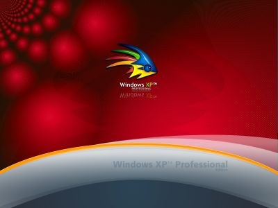 wallpaper xp   linux por txiru (152)