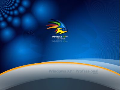 wallpaper xp   linux por txiru (154)