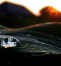 Burning Dawn by Callu
