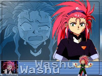 washu1024