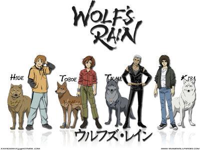 wolfsrain 6